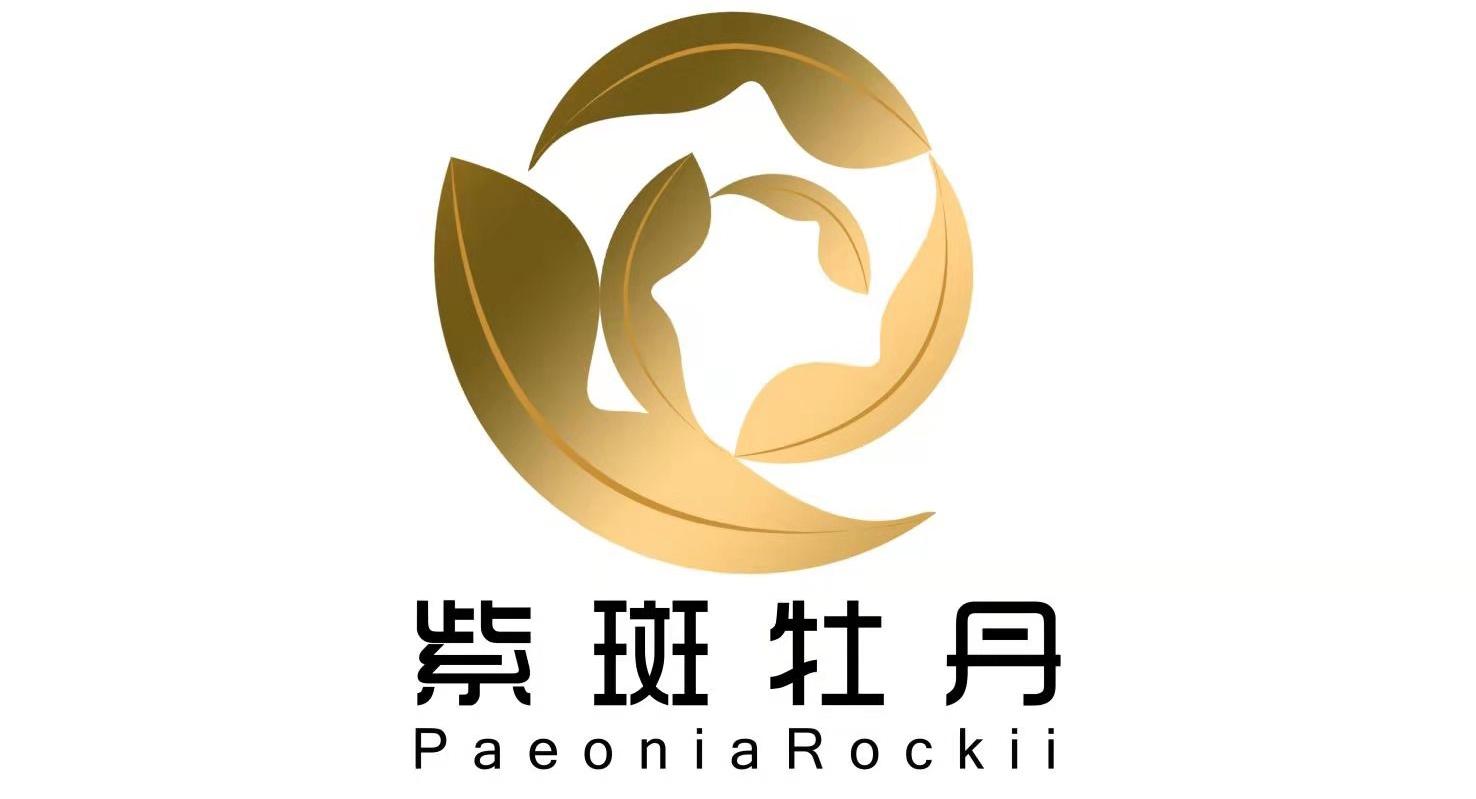 PaeoniaRockii|ChineseTree Peony|Japanese Peony